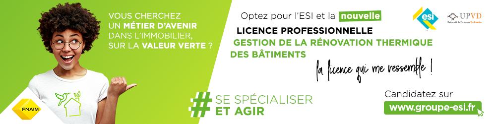 Licence Pro GRTB - ESI