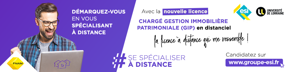 Banniere Licence Pro GIP distance